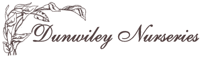 Dunwiley Nurseries Ltd.